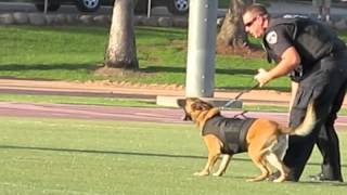 "K9 Jaris ""toughest Dog"" Inland Empire K9 Show"
