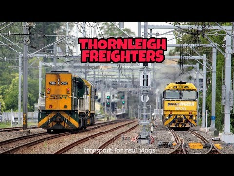 Transport for NSW Vlog No.1125 Thornleigh Freighters