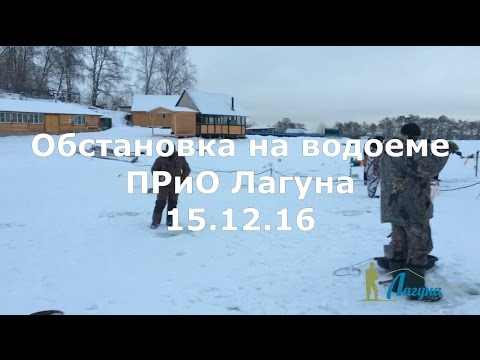 Обстановка на водоеме ПРиО Лагуна 15.12.16 (ловля форели зимой)