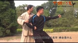 Learn Bajiquan Online----baji Quan Training Practice Highlights