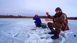 Отличный клев ПЛОТВЫ Прикормили лунки Рыбалка на Ладожском озере