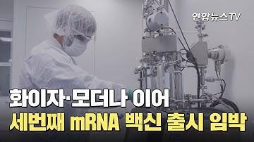 화이자·모더나 이어 세번째 mRNA 백신 출시 임박 / 연합뉴스TV (YonhapnewsTV)