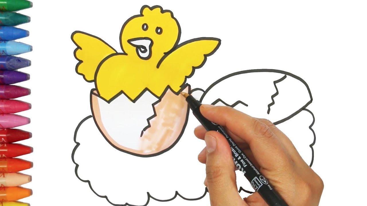 Civciv çizim Nasıl Yapılır Nasıl çizilir çocuk Ve Bebek Için