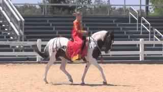 Kentucky Horse Park - Parade of Breeds (Canon VIXIA HF G10)