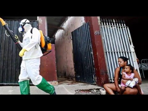 Zika: Brazil to deploy army in fight against virus