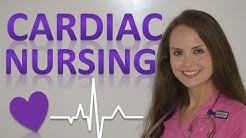Cardiac Nursing Specialty   Cardiac Nurse Salary, Job Overview, Certifications