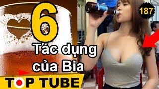 Top 6 Những Lý Do Khiến Bạn Không Nên Trì Hoãn Việc Uống Bia [Top tube 188]