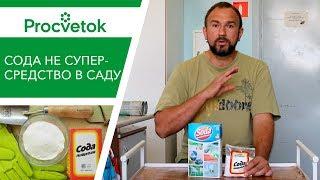 СУПЕР-СПОСОБ отравить огород. Сода. Ужасные советы от Урожайный огород, Миняевой, А ты знал?