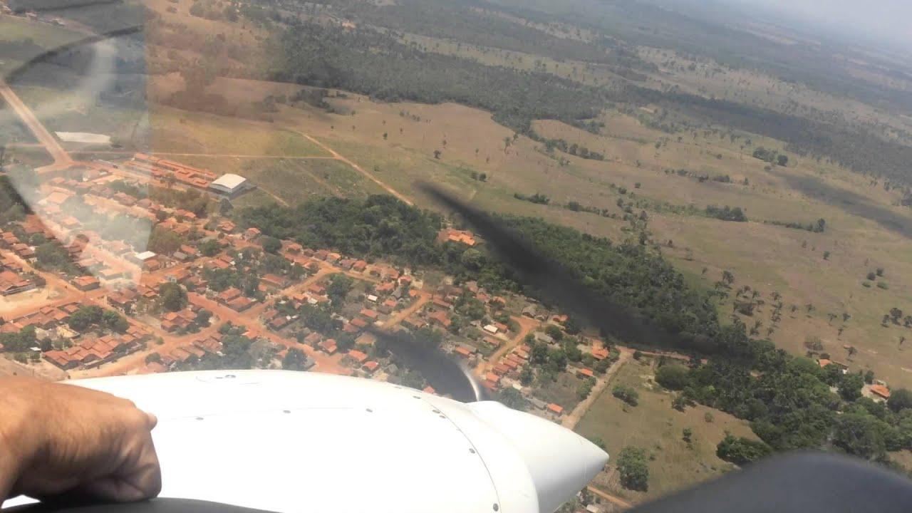 Ananás Tocantins fonte: i.ytimg.com