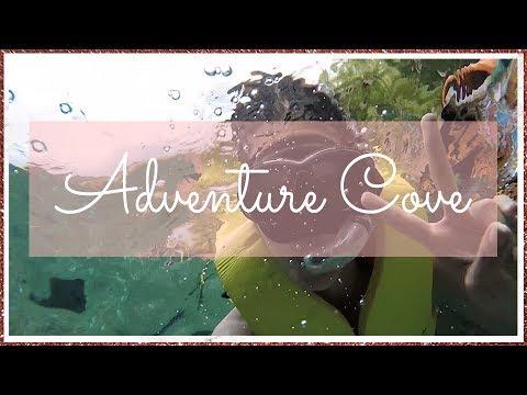 Day @ Adventure Cove | chinaphilidoll