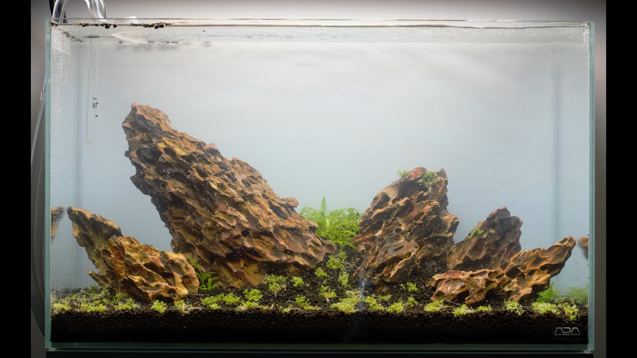 Aquascape set-up | Step by Step | ADA 60p - YouTube