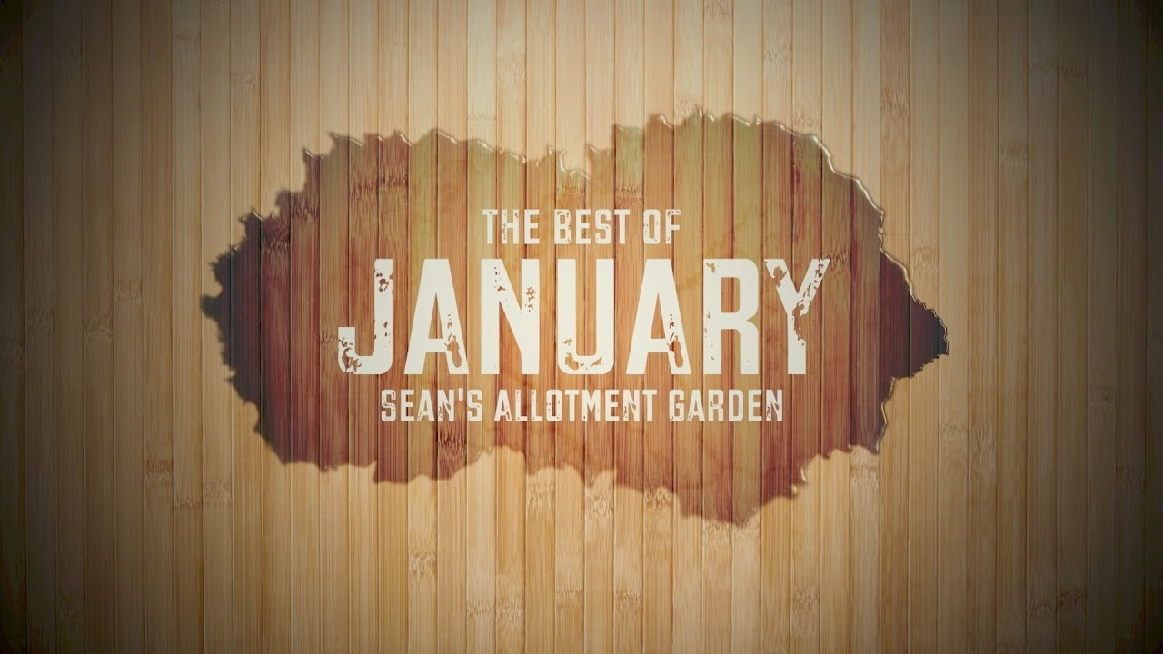 What To Do In The Kitchen Garden Allotment In January