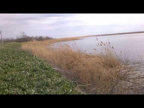 река Ея. Щербиновский район. Краснодарский край.