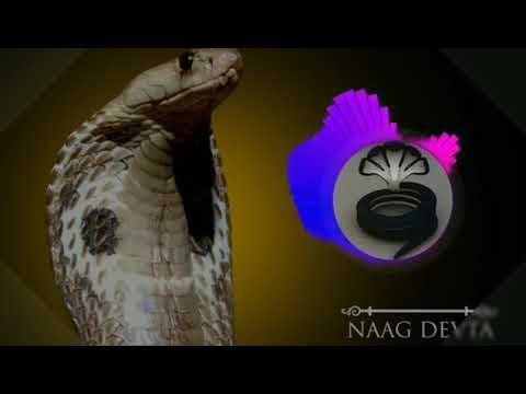 Naagin bean remix by Dk king dj