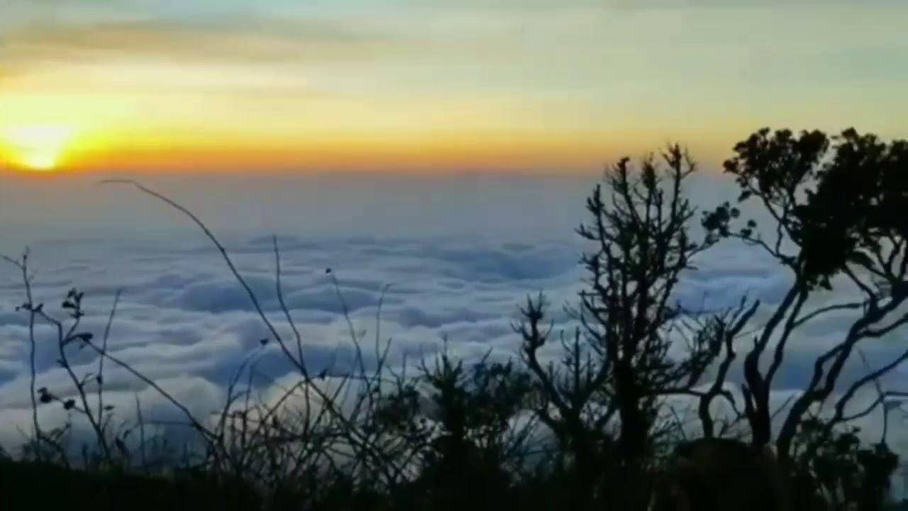 Terbaru Video Pemandangan Alam 30 Detik Story Wa Youtube