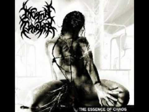 Infernal Tenebra - 01. Damage Control.wmv