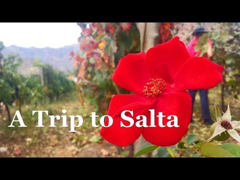 A Trip to Salta