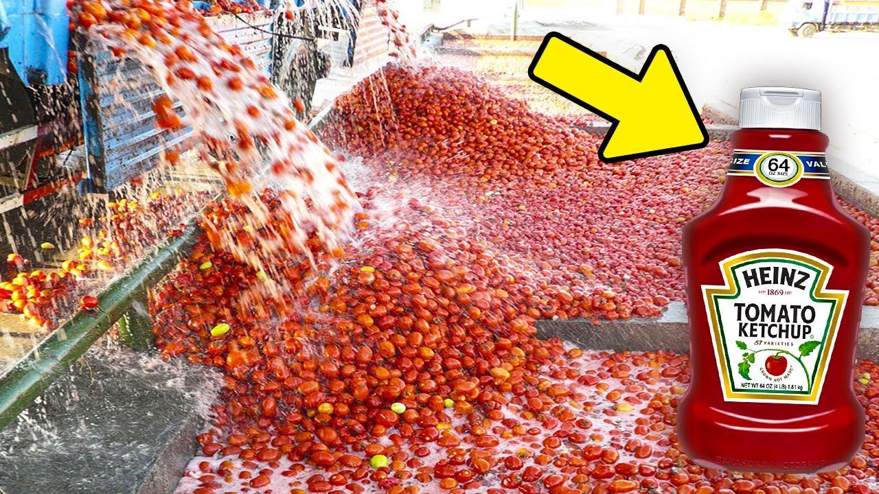 Como é Feito o Ketchup? Veja Como Essas Coisas São Fabricadas (Parte 3)