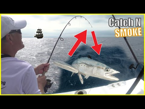 REELS SCREAMING! How To CATCH And SMOKE FISH