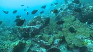 S Y Hemisphere- Marquesas