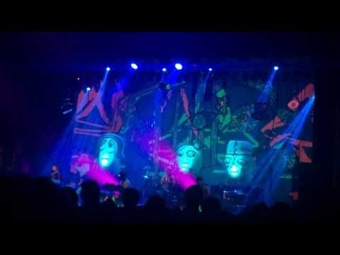 Loch Raven Live At Royal Oak/Animal Collective (5-4-2016)