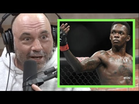 Joe Rogan | Stylebender is the Next Superstar!