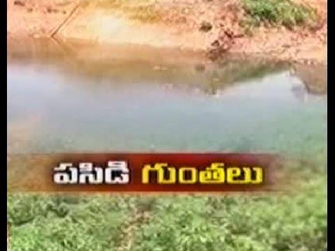Kadapa farmer's overcoming drought with farm ponds - జైకిసాన్ - on 1st May 2015