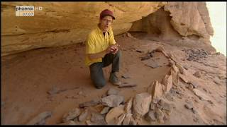 Im Herzen der Sahara - Anatomie einer Wüste