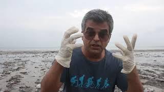 Review of the garbage on Juhu Beach, Mumbai