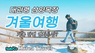 국내 겨울 여행지 추천 / 대관령 / 삼양목장 / 강원…