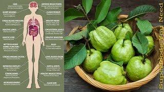 8 Beneficii pentru sănătate ale fructelor și frunzelor de guava