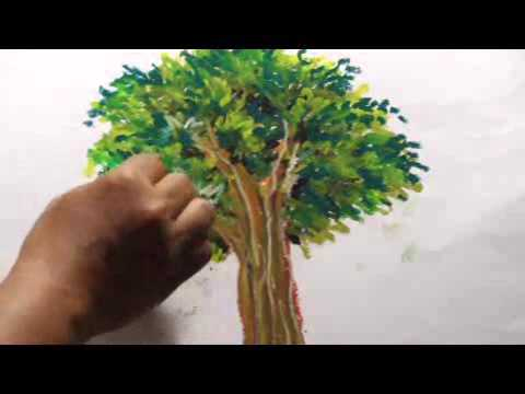 Belajar Menggambar Dan Mewarnai Pohon