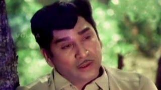 Yuvaraju Songs | Nelallu Nindinattu | ANR, Jayasudha | HD