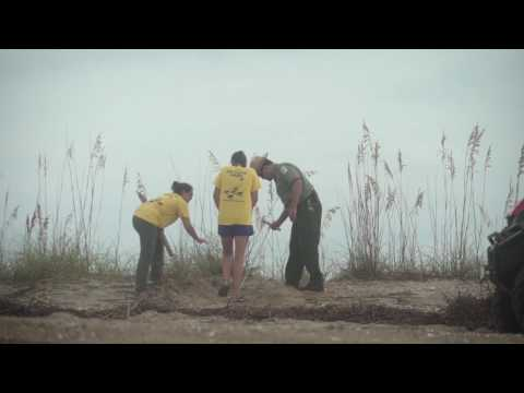 Honda supports the Sea Turtle Patrol of Edisto State Park