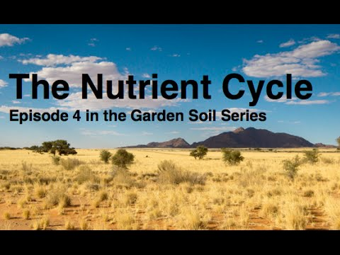 The Nutrient Cycle Episode 4 in the Garden Soil Series Alberta Urban Garden
