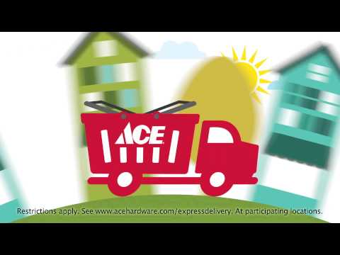 Express Delivery- Same Day Delivery from your Neighborhood Ace
