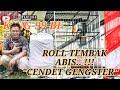 Cendet  Gengster  Milik Latip Rumah Mebel King  Bf Ganas Di Piala Kambing Hitam Cup Iv  Mp3 - Mp4 Download