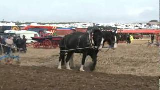 THE GREAT DORSET STEAM FAIR - ALL THE FUN OF THE FAIR