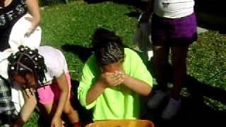 Bobbing For Apples.2010