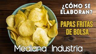 Producción de Papas Fritas (Industria pequeña) thumbnail