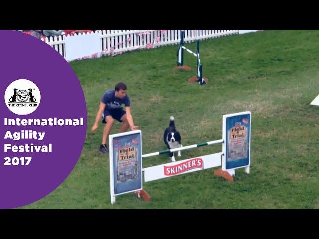 Olympia Quarter Final - G6-7 Senior Agility Part 2 | International Agility Festival 2017