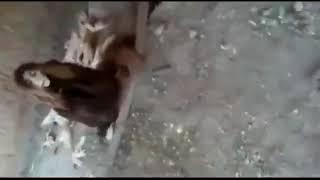 Real ambuli in India shocking video