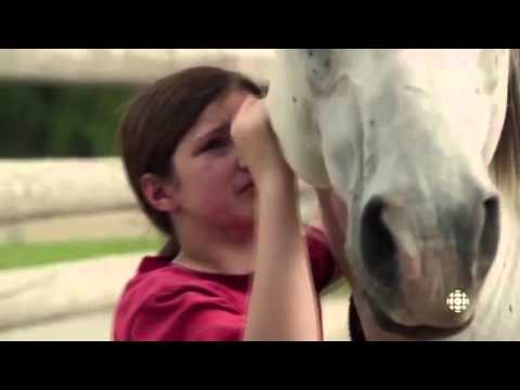 Heartland - Lou and Georgie   In my daughter's eyes from YouTube · Duration:  4 minutes 52 seconds