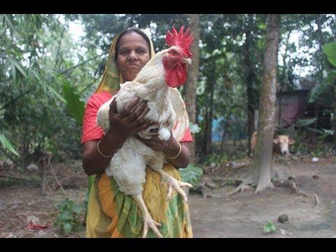 Village Food | 6 Kg big chicken prepared by grandmother