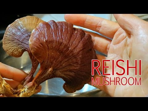 How To Make Reishi Mushroom Tea (Ling Chi, Ling Zhi)