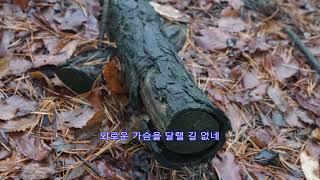 봄비 - 김추자: BA 펜션 산책길 2017년 4월 1…
