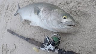 FINICKY Tailor Chopper Bluefish DOUBLE AXIOM Surf Fishing. The chop...