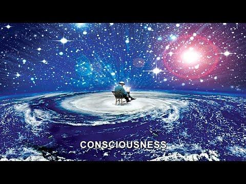 Ruben Papian Lecture - Consciousness