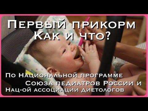ПЕРВЫЙ ПРИКОРМКак и с Чего начать?? без регистрации и смс