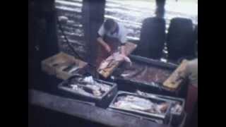 Fleetwood fish docks, Lancashire 1968